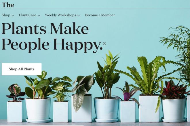 千禧一代爱绿植,美国互联网室内植物初创公司 The Sill 完成500万美元融资