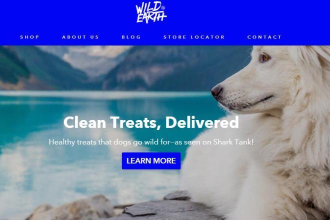 狗狗也吃素!真菌蛋白宠物食品初创公司Wild Earth完成1100万美元A轮融资