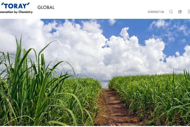 用甘蔗和玉米替代石油,日本东丽首创100%基于植物原料的聚酯纤维
