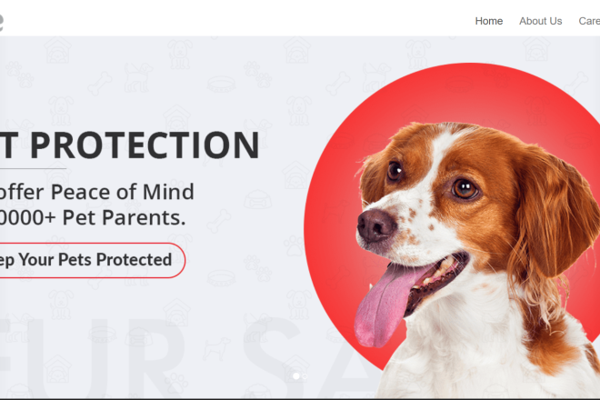 新兴宠物安全物联网公司 Nimble 宣布收购宠物社交平台 Waggle Ventures
